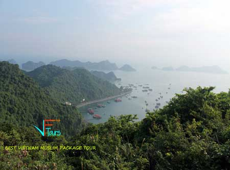vietnam muslim tour for great services