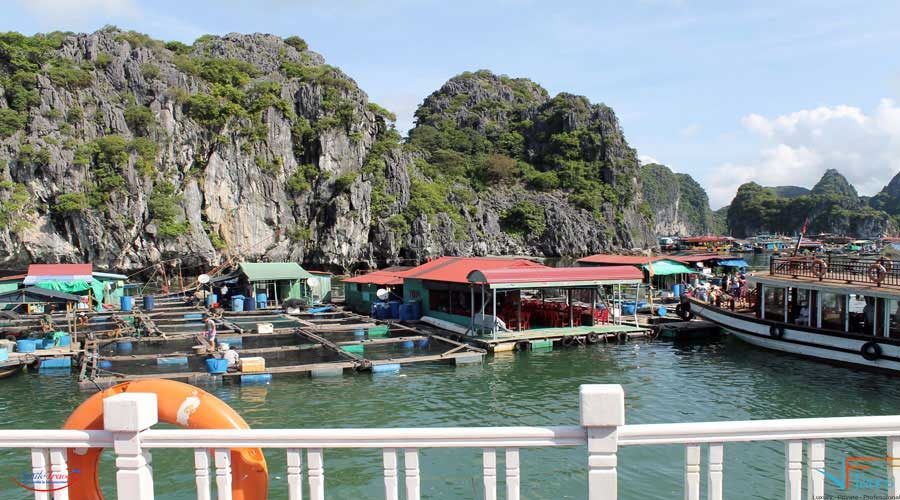 Lan Ha Legend Cruise Halong