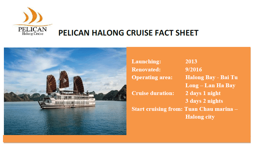 Pelican Cruises Halong are one of few cruises line in Halong Bay with fully equipment, the highest safety standards with sonar, radars. Each cabin is provided modern alarm devices linked to a central monitoring system, smoke sensor, fire extinguishers, hydrant and hoses, life jacket and clear emergency instructions. However, the most important one to make the excellent service, to constantly listen to and learn any feedback of customers to improve our service, to constantly researching, developing a new product and build the new remote to the gorgeous area with the path less traveled, to constantly keep environment in Halong Bay is our staff – the Human Resources.  Let's enjoy your time on Pelican cruises in Halong Bay with Viet flame tours.