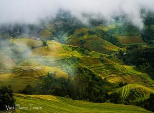 best-sapa-view(450)